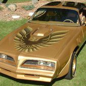 Gold Special Edition Trans Am 1978