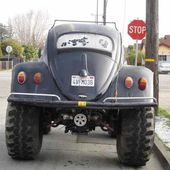 Lifted Bug
