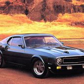 1969 Shelby GT350 Ford Mustang