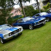 Some Mustangs